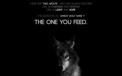 What wolf are you feeding?